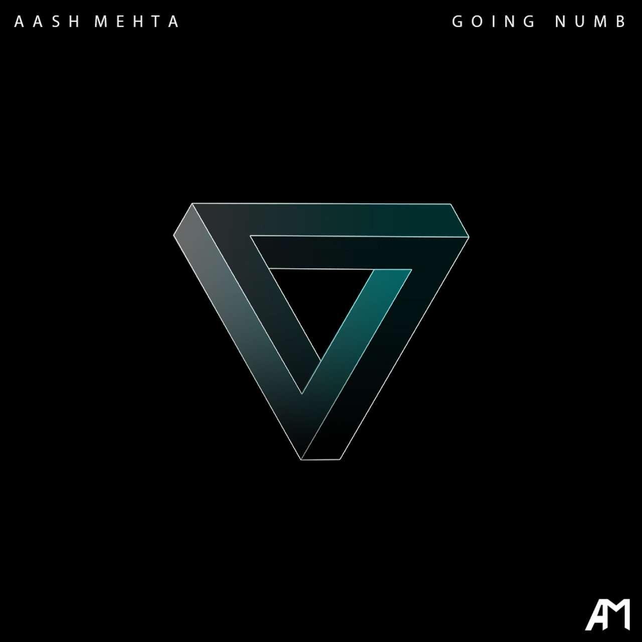 Aash Mehta《Going Numb》[CD级无损/44.1kHz/16bit]