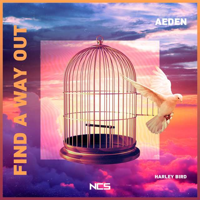 Aeden《Find a Way Out》[CD级无损/44.1kHz/16bit]