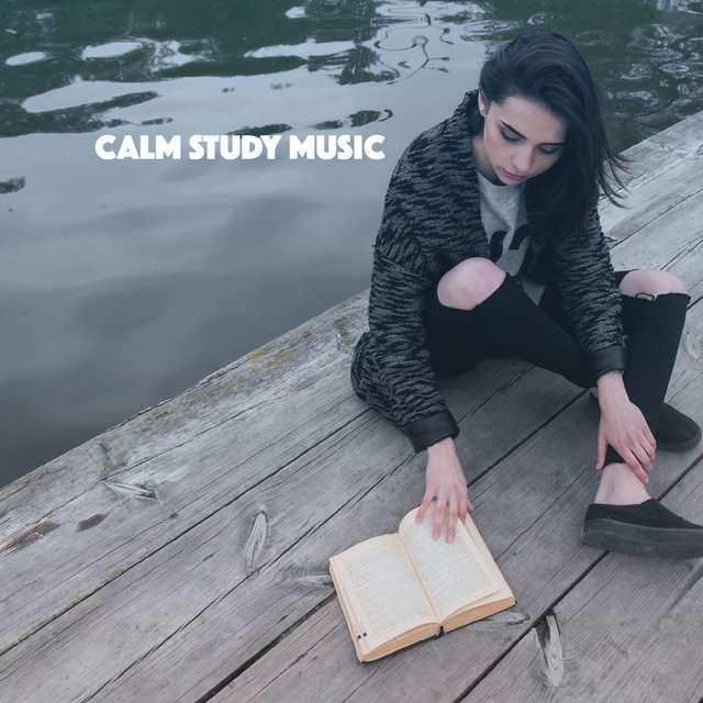 V.A《Calm Study Music》[CD级无损/44.1kHz/16bit]