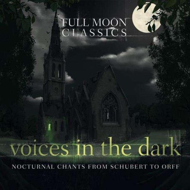 V.A《Voices in the Dark》[CD级无损/44.1kHz/16bit]